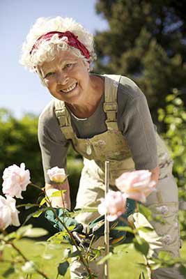 Therapeutic Gardening